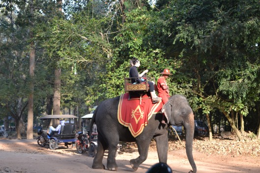 Elephant rides at Angkor Thom