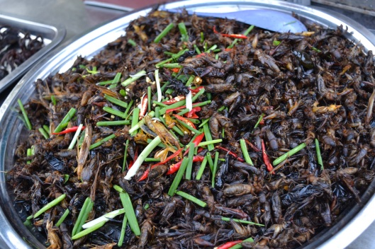 Fried Bugs anyone?