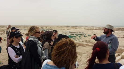 Tour's Organised by Qatar Museums
